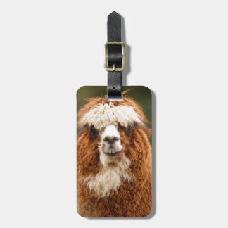 Alpaca Smiles Bag Tag