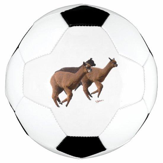Alpaca Soccer Ball