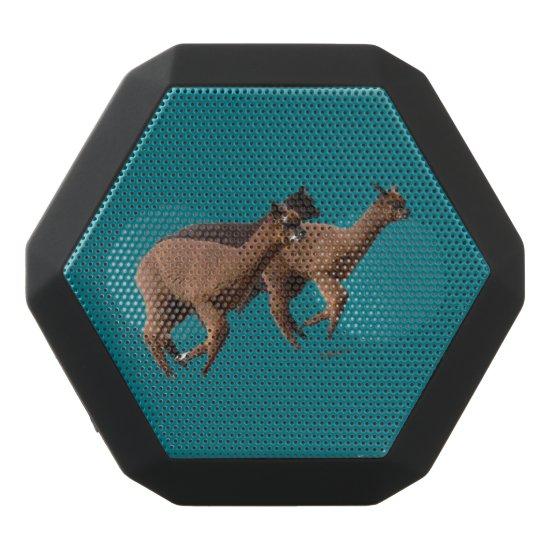 Alpaca Speakers