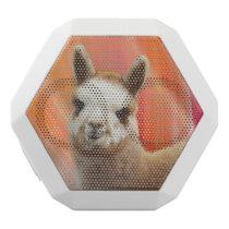 Alpaca Speakers Rossi
