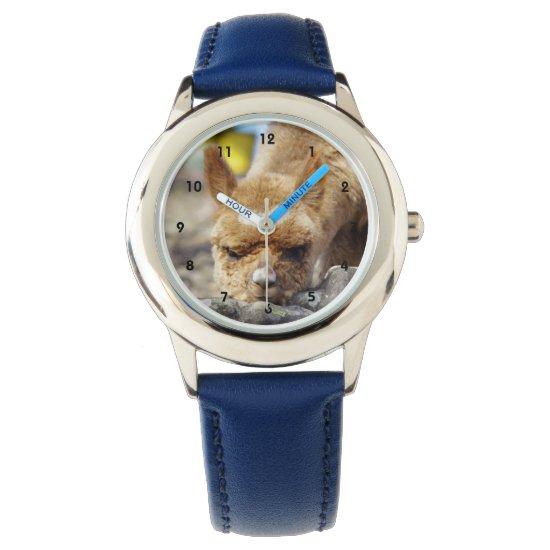 Alpaca Stainless Steel Watch