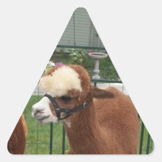 Alpaca Triangle Stickers