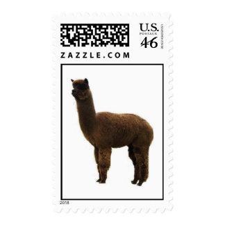Alpaca stud postage stamps