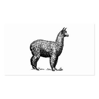 Alpaca Plantilla De Tarjeta De Negocio