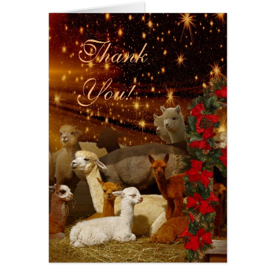 Alpaca Thank You Christmas Note Cards
