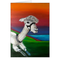 Alpaca - Thursday  get well card with story
