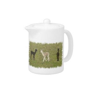 Alpaca trio teapot