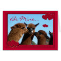 Alpaca Valentine Card