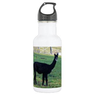 Alpaca Water Bottle