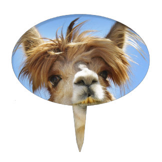 Alpaca with Crazy Hair Cake Topper