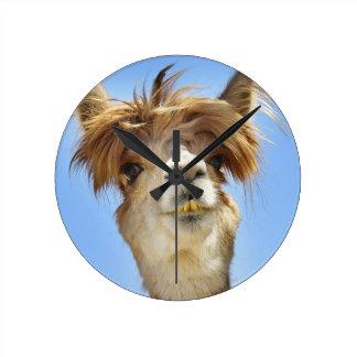 Alpaca with Crazy Hair Round Clock