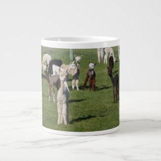 alpaca youngsters mug