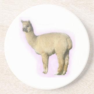Alpacas are cuter than llamas coasters