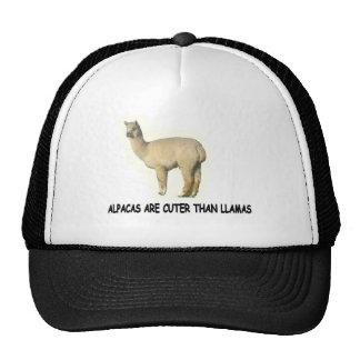 Alpacas are cuter than llamas trucker hat