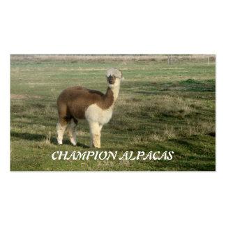 Alpacas del campeón plantillas de tarjetas de visita