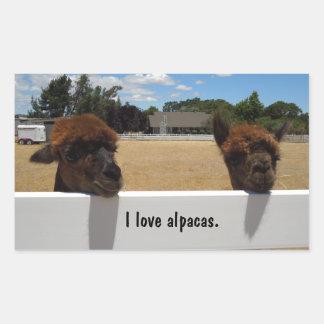 Alpacas en Templeton, California Pegatina Rectangular