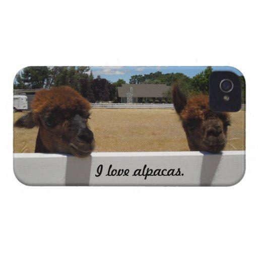 Alpacas in Templeton, California Case-Mate iPhone 4 Case