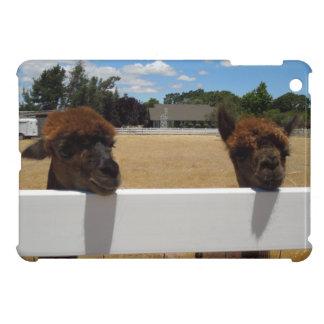 Alpacas in Templeton, California iPad Mini Cases