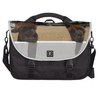Alpacas in Templeton, California Laptop Messenger Bag