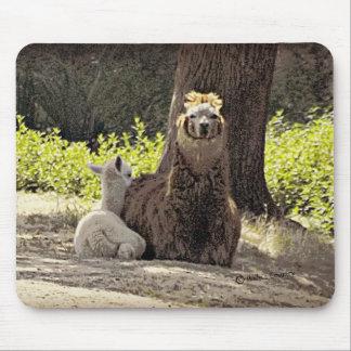Alpacas - mamá y bebé tapetes de ratón