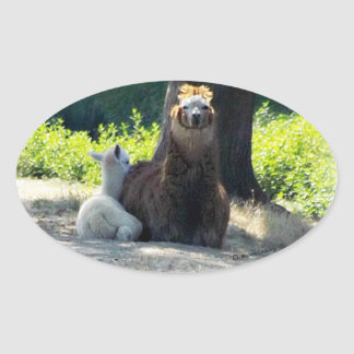 Alpacas - Mom & Baby Oval Sticker