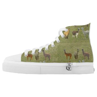 Alpacas Printed Shoes