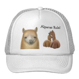 Alpacas Rule Hat