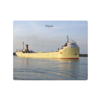 Alpena metallic wall art