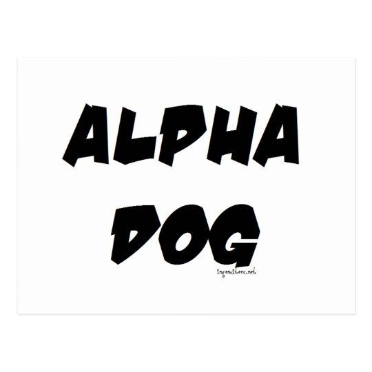 Alpha Dog Postcard