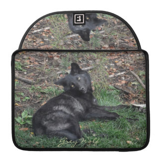Alpha Grey Wolf Pup Wildlife MacBook Sleeve