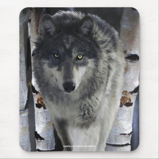 ALPHA GREY WOLF Wildlife Supporter Mousepad
