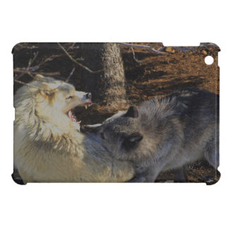 Alpha Male Battling Wolves, Wildlife, Wild Animals Cover For The iPad Mini