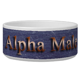 Alpha Male Faux Blue Denim and Copper Bowl
