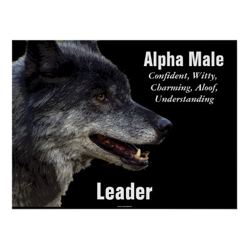 the symbolism of wolves and its influence on the elimination of gray wolf Dreams about wolves: dream meanings explained certainly the north american indian cultures and tribes find the wolf a very important dream symbol.