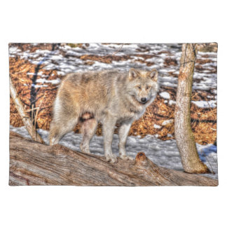Alpha Male Grey Wolf Wildlife Photo Place Mat