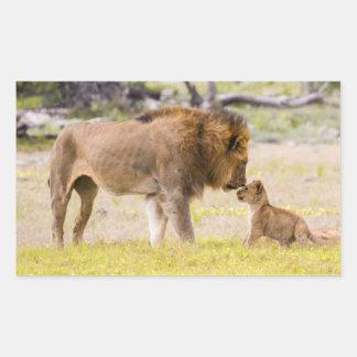Alpha male lion inspects cub rectangular sticker