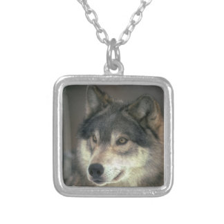 Alpha Male Timber Wolf Necklace