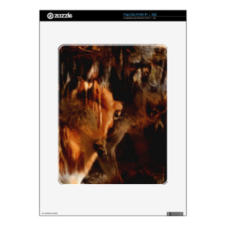Alpha Male Wolf  Battles Grunge Art Skins iPad Skins