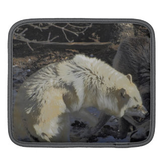 Alpha Male Wolf Challenge Battling Wolves iPad Sleeve