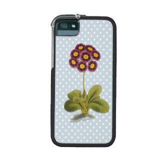Alpine Auricula Flower, Purple Floral, Polka Dots iPhone 5 Cases