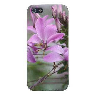 Alpine bloom iPhone SE/5/5s case