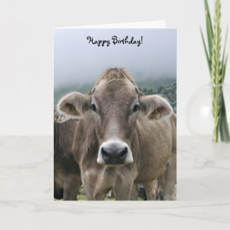 Alpine cow birthday card card