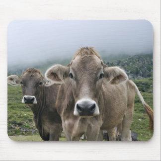 Alpine cows mouse pad