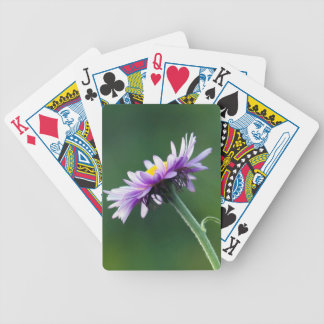 Alpine Daisy Bicycle Playing Cards