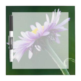 Alpine Daisy Dry Erase Board