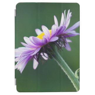 Alpine Daisy iPad Air Cover