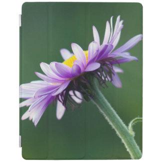 Alpine Daisy iPad Smart Cover
