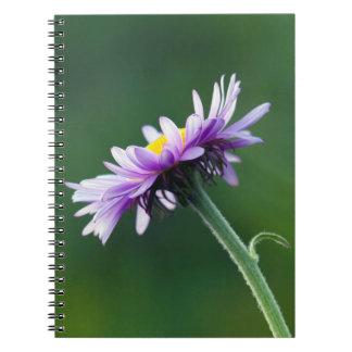 Alpine Daisy Notebook