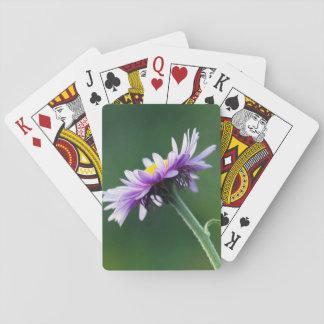 Alpine Daisy Playing Cards