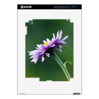 Alpine Daisy Skin For iPad 3